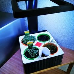 IMG_20200517_115835.jpg Télécharger fichier STL Potager d'intérieur à Led • Design à imprimer en 3D, AmauryBertolotti