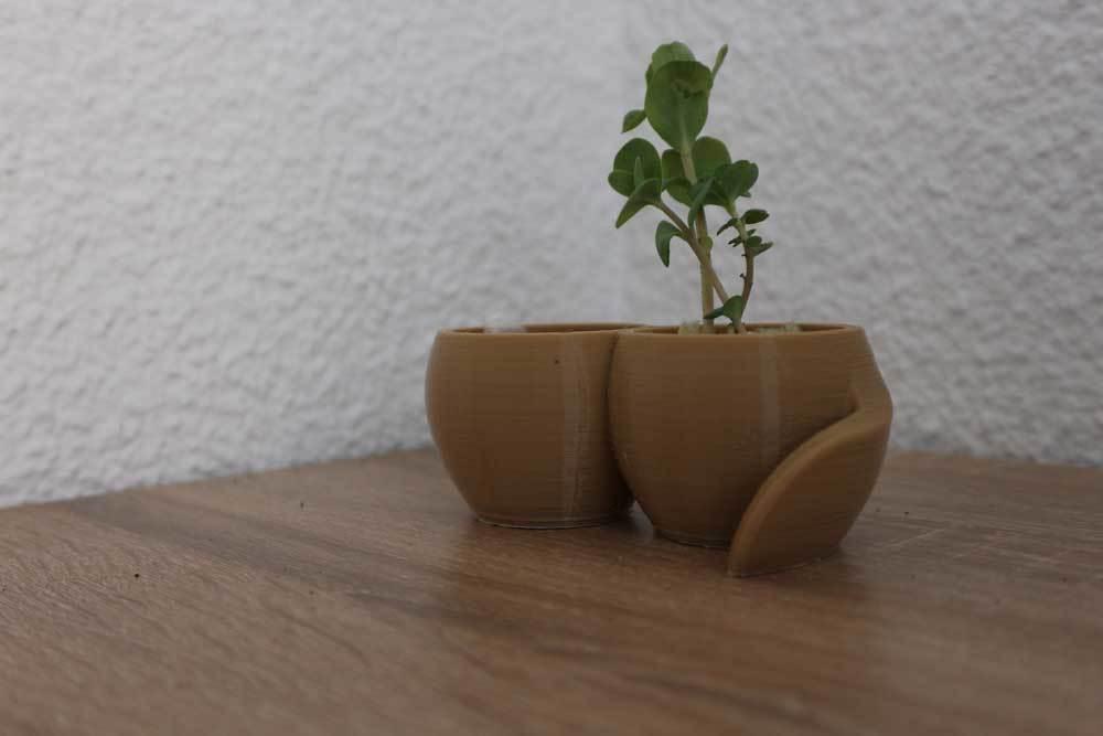vase2.jpg Download free STL file Plant pot with reservoir • 3D printable model, Xertos-3d