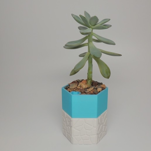 DSCN4645 (2).JPG Download STL file Self-watering Planter 3 • 3D print design, O3D