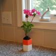 Download free STL files Self-watering Planter 3, O3D