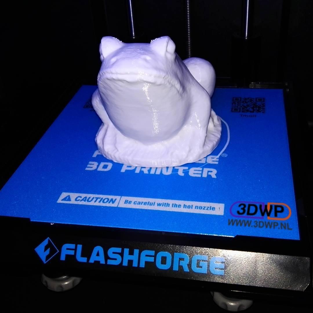 21373315_273029079855952_5596476570056261632_n.jpg Télécharger fichier STL gratuit Sculpture de grenouille - Scan 3D • Objet à imprimer en 3D, 3DWP