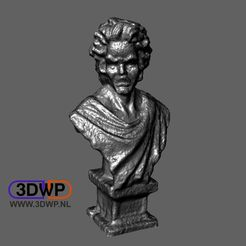 Mozart.JPG Download free STL file Mozart Bust (Statue 3D Scan) • 3D printable object, 3DWP