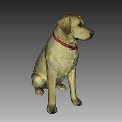 Descargar Modelos 3D para imprimir gratis Escultura de Labrador (Dog Statue Color 3D Scan), 3DWP