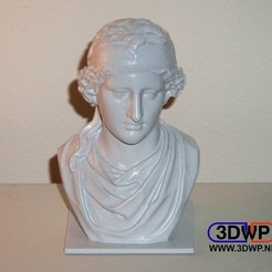 Download free 3D printer model Aphrodite Bust (Sculpture 3D Scan), 3DWP