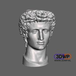 Augustus1.jpg Download free STL file Head Of Roman Emperor Augustus 3D Scan • 3D print object, 3DWP