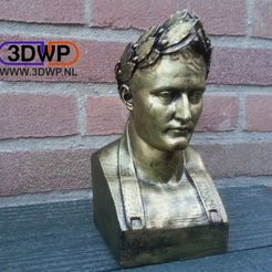 Download free 3D printing files Napoleon Bust 3D Scan, 3DWP