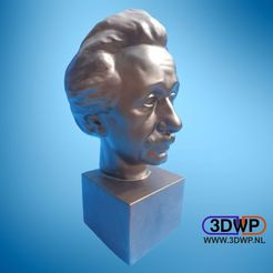 Download free STL file Albert Einstein Bust 3D Scan, 3DWP