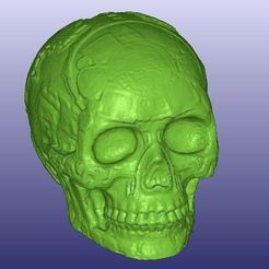 Download free STL file Mayan Skull 3D Scan (Hollow), 3DWP