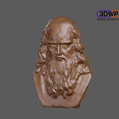 Leonardo.JPG Télécharger fichier STL gratuit Scan 3D du buste de Léonard de Vinci • Objet à imprimer en 3D, 3DWP