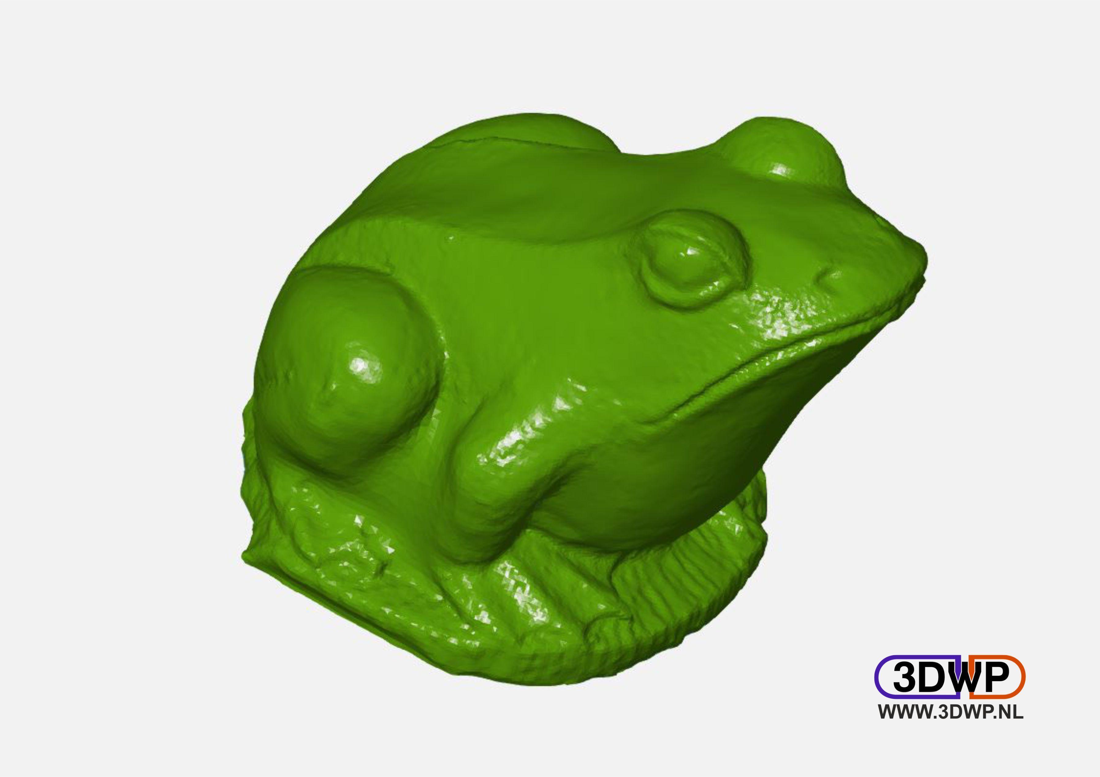 FrogSculpture.JPG Télécharger fichier STL gratuit Sculpture de grenouille - Scan 3D • Objet à imprimer en 3D, 3DWP