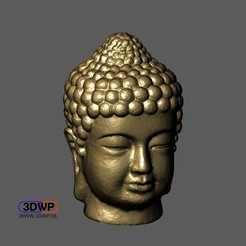 Buddha1.JPG Download free STL file Buddha Head 3D Scan • 3D printable object, 3DWP
