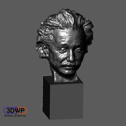 Einstein.JPG Download free STL file Einstein Bust 3D Scan (Jo Davidson) • 3D printable model, 3DWP