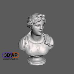 Download free STL Bust Of A Young Woman - Simone Bianco (Statue 3D Scan), 3DWP