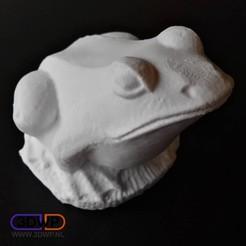 Télécharger fichier 3D gratuit Sculpture de grenouille Scan 3D, 3DWP