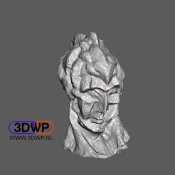 Picasso.JPG Download free STL file Picasso - Head Of A Woman (Sculpture 3D Scan) • Design to 3D print, 3DWP