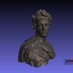 Caesar.JPG Download free STL file Julius Caesar Bust (3D Scan) • 3D printable object, 3DWP