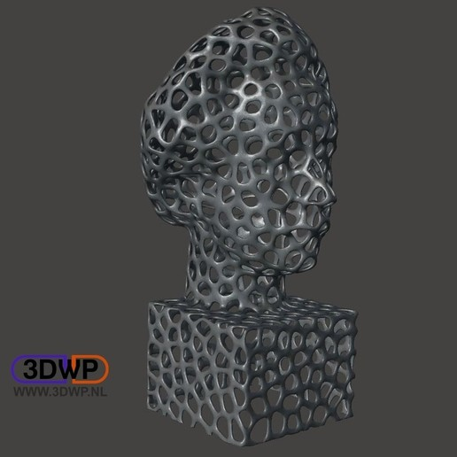 Download free 3D printer templates Einstein Bust (Voronoi Style), 3DWP