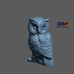 Owl1.JPG Download free STL file Owl Sculpture 3D Scan • 3D printing object, 3DWP