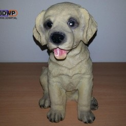 LabPup2.jpg Télécharger fichier STL Chiot Labrador (scan 3D d'une statue de chien) • Design pour impression 3D, 3DWP