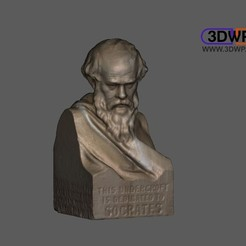 Download free STL files Socrates Bust (3D Scan), 3DWP