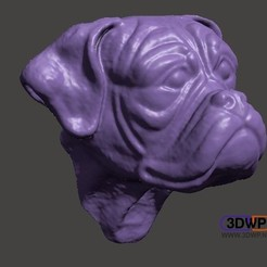 BoxerHead1.jpg Download STL file Boxer Head (Dog Head Wall Hanger) • 3D printing template, 3DWP