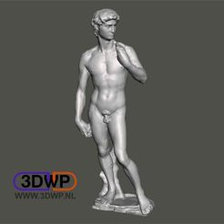 David.JPG Download free STL file David By Michelangelo Sculpture (Statue 3D Scan) • 3D printing object, 3DWP