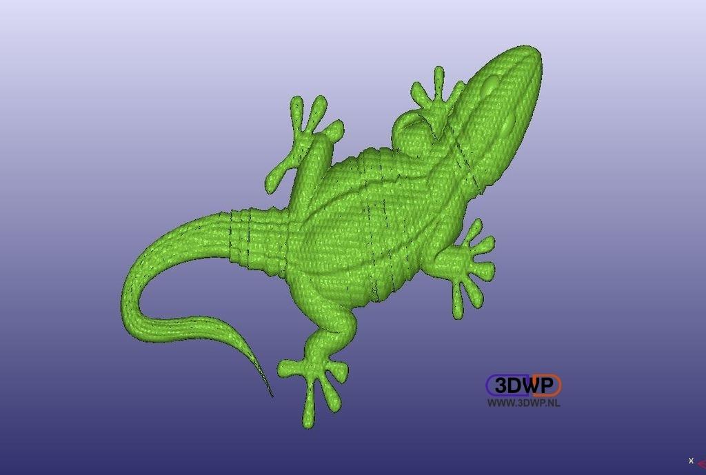 Gecko1.jpg Download free STL file Gecko • Design to 3D print, 3DWP