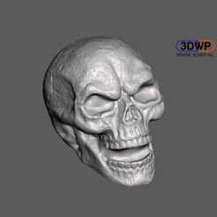 Skull.JPG Download free STL file Skull Sculpture 3D Scan (Including Hollow Version) • 3D printing design, 3DWP