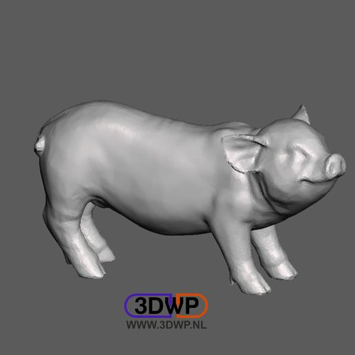 Pig2.JPG Télécharger fichier STL gratuit Sculpture porcine 3D Scan • Modèle à imprimer en 3D, 3DWP