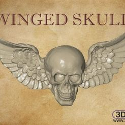 WingedSkull.jpg Download STL file Winged Skull Wall Hanger • 3D printing model, 3DWP