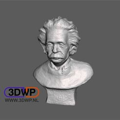 Einstein.JPG Download free STL file Einstein Sculpture (Bust 3D Scan) • Design to 3D print, 3DWP
