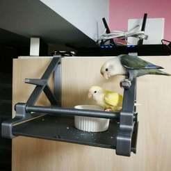 Télécharger fichier 3D gratuit Perchoir à oiseaux (crochet sur la porte de l'armoire), ShockyBugs