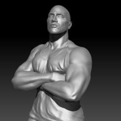 LAROCAAA.jpg Télécharger fichier OBJ The Rock - The Rock (dwayne johnson) • Design pour imprimante 3D, JoacoKin