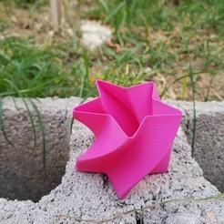 Télécharger fichier STL Vase à spirale TWIST Planter Star • Objet pour imprimante 3D, PolacoJNM