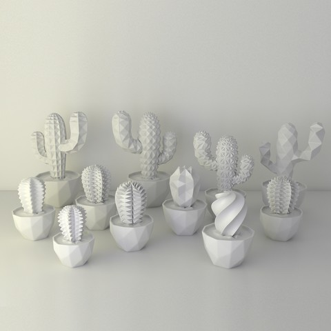cactus family photo white_square.jpg Download free STL file VECTARY succulent family • 3D print template, VECTARY