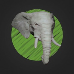 Render_elephant.jpg Download STL file African Elephant Head - High Poly • 3D printable design, ricardo-jfa