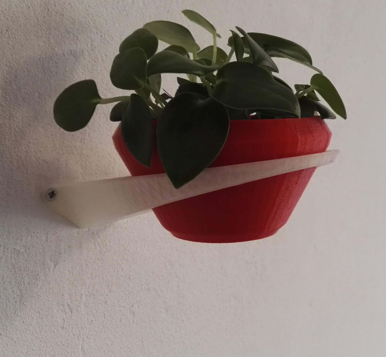 IMG_20161204_1501022.jpg Download STL file Wall planter • 3D print template, victor_designs