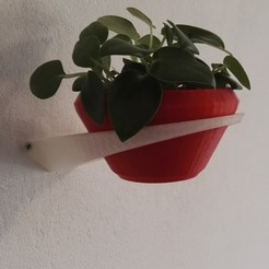 3d print files Wall planter, victor_designs