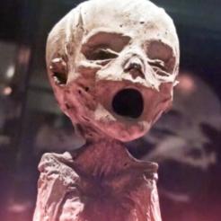Free 3d printer designs Mummified Head, 3DGuyDubai