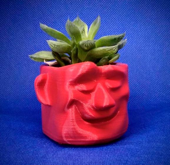 maceta.jpg Download free STL file Dream pot • 3D print model, elnata
