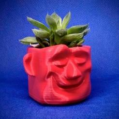maceta.jpg Télécharger fichier STL gratuit Pot de rêve • Design imprimable en 3D, elnata