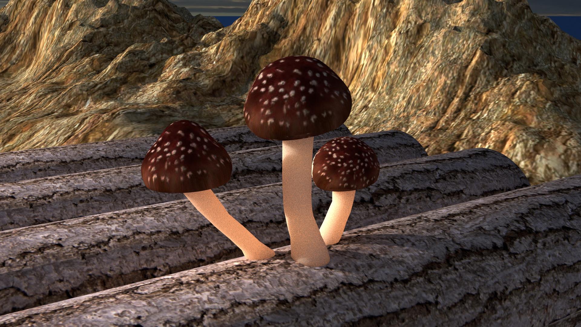 CHAMPIGNON TEST.png Download free STL file Mushroom trio • 3D printer object, V-design