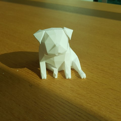 20170328_161310.jpg Download OBJ file Low Polygon Pug dog model 3D print model • 3D printing model, zebracan