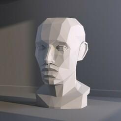 01.jpg Download OBJ file Low polygon plane of head 3D print model • Template to 3D print, zebracan