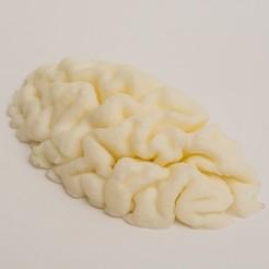 3D printer files mri brain, Medhat