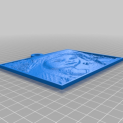4c72b4f7a1dda2a629f92d4b23b2a37a.png Download free STL file My Customized Lithopane • 3D printing object, faisca2000