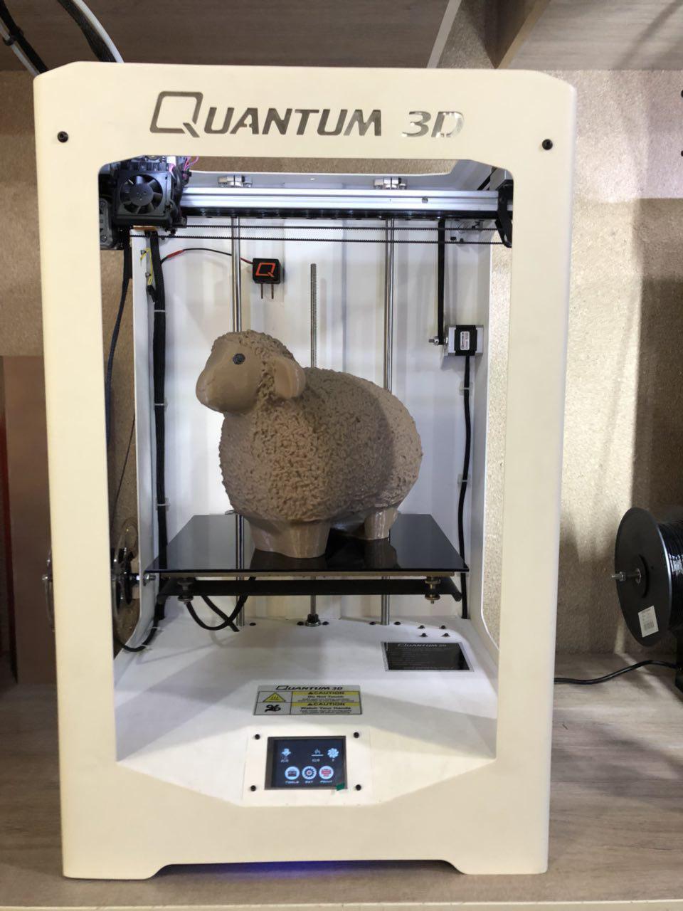 photo_2017-12-21_12-27-10.jpg Télécharger fichier STL gratuit Wooly && Moutons paresseux • Plan à imprimer en 3D, Quantum3D