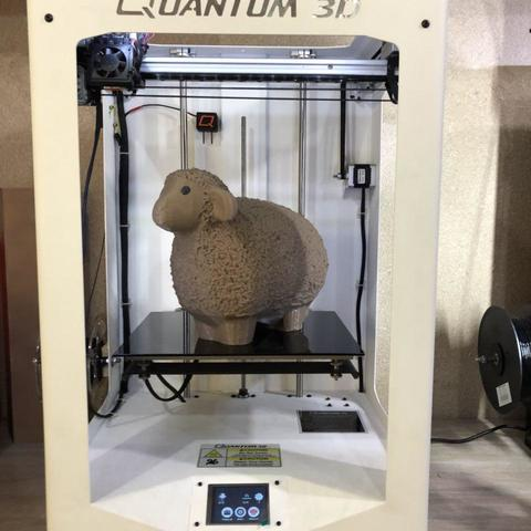 photo_2017-12-21_12-27-10.jpg Download free STL file  Wooly && Lazy Sheep • Object to 3D print, Quantum3D