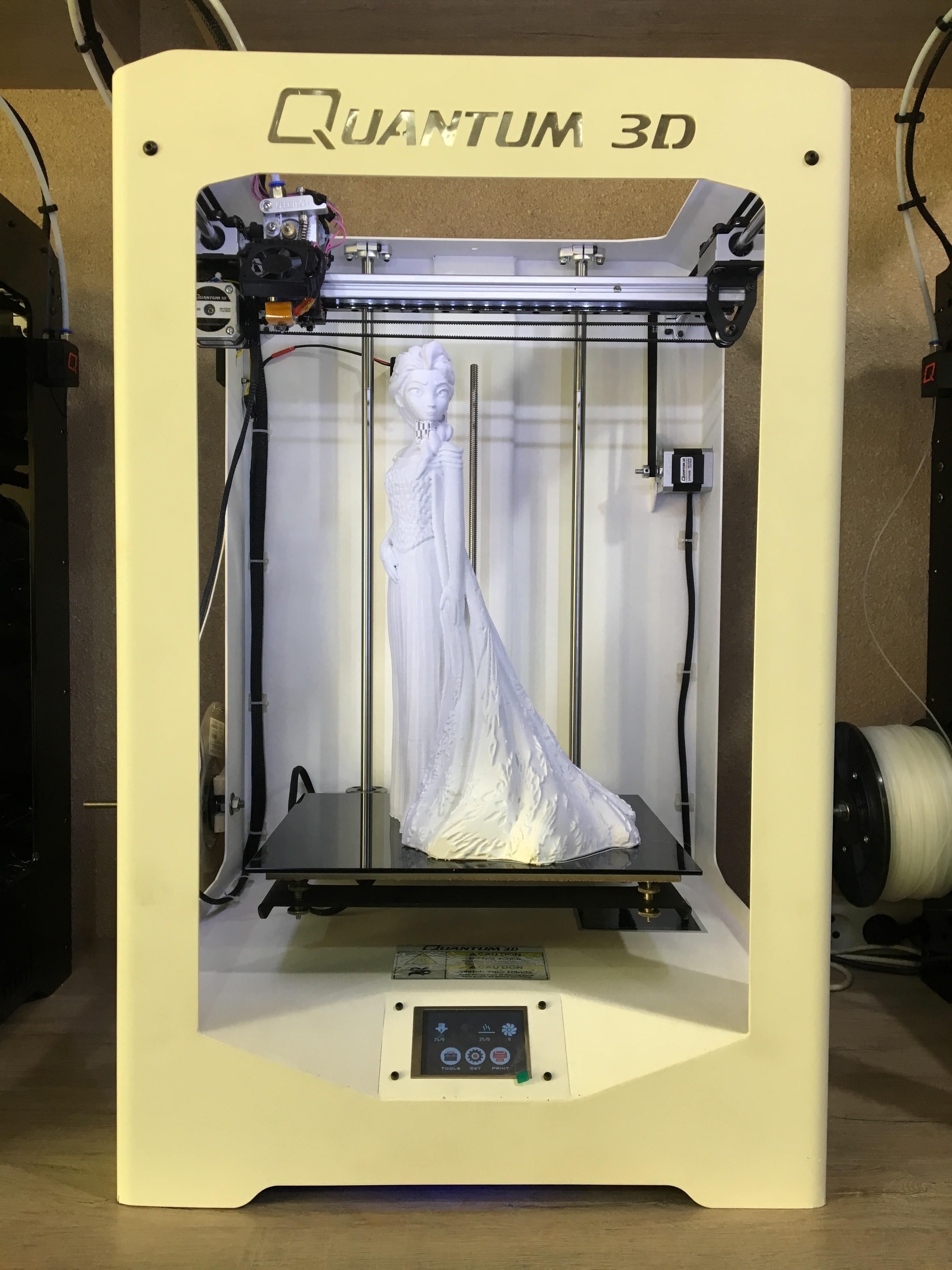 IMG_0470.JPG Télécharger fichier STL gratuit Elsa Doll • Modèle pour impression 3D, Quantum3D