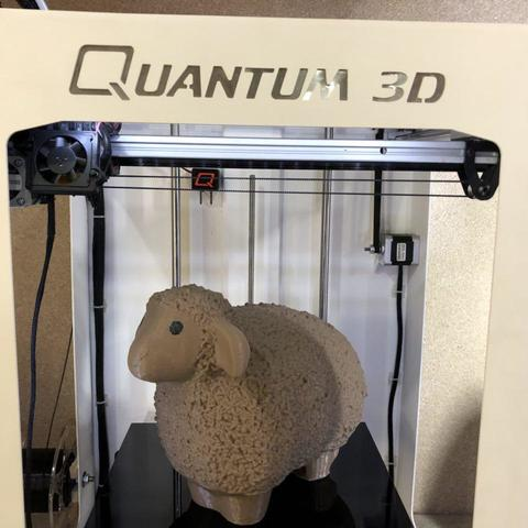 photo_2017-12-21_12-26-47.jpg Download free STL file  Wooly && Lazy Sheep • Object to 3D print, Quantum3D